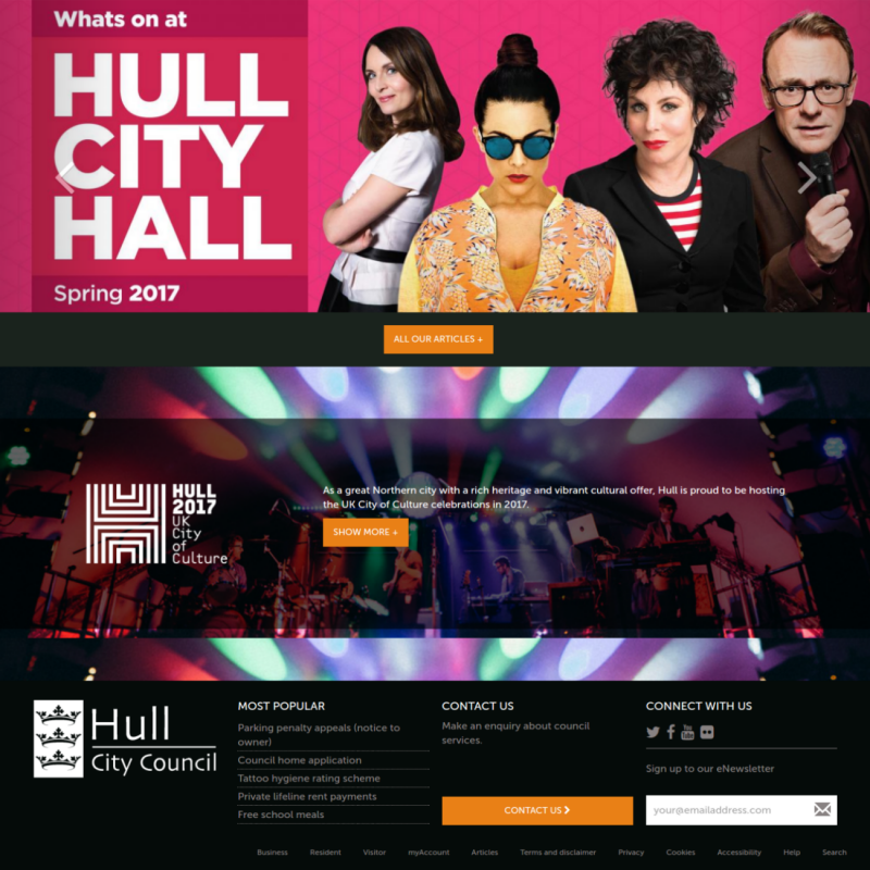 Council website development